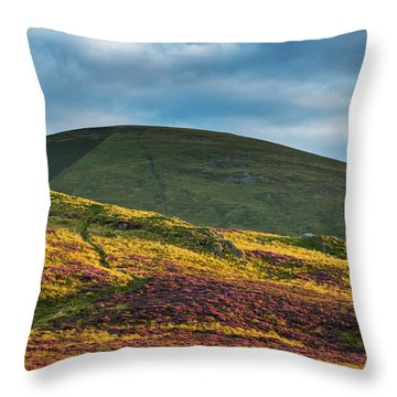 Heathery Hedgehope Throw Pillow