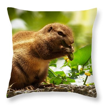 Throw Pillow featuring the photograph Heathy Breakfast by Christine Sponchia