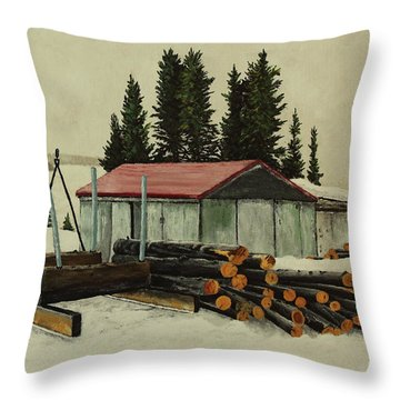 Heating Throw Pillow