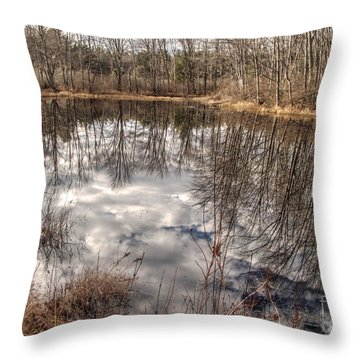 Throw Pillow featuring the photograph Heaven Below by Betsy Zimmerli