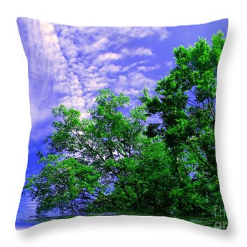 Throw Pillow featuring the photograph Heavenly by Elfriede Fulda