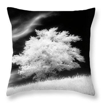 Heavenly Places Throw Pillow by Dan Jurak