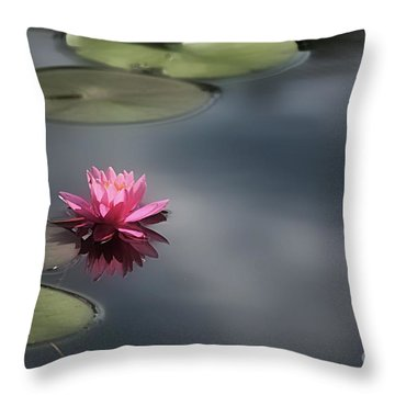 Heavenly Sunshine Throw Pillow by Brenda Bostic