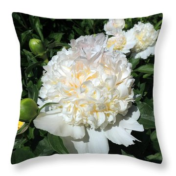 Heavenly White Throw Pillow by Teresa Schomig