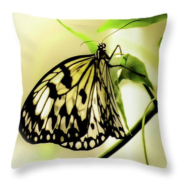 Heaven's Door Hath Opened Throw Pillow by Karen Wiles