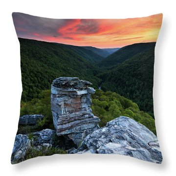 Heaven's Perch Throw Pillow