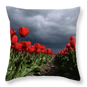 Heavy Clouds Over Red Tulips Throw Pillow by Mihaela Pater