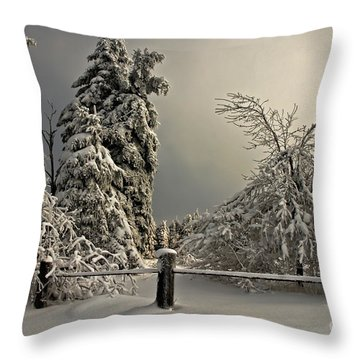 Throw Pillow featuring the photograph Heavy Laden by Lois Bryan