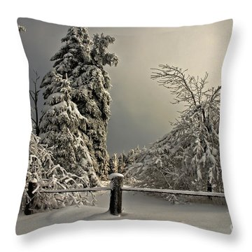Heavy Laden Throw Pillow