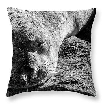 Heavy Sleeper Throw Pillow