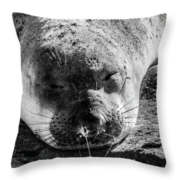 Heavy Sleeper Throw Pillow