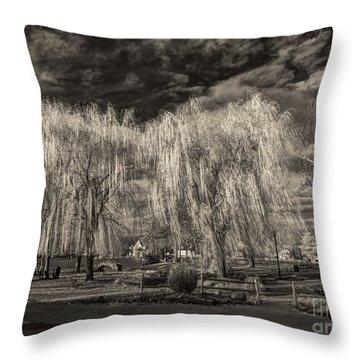Heckscher Pond Long Island Throw Pillow