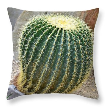 Throw Pillow featuring the photograph Hedgehog Cactus by James Fannin