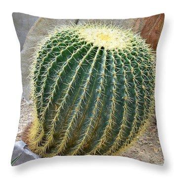 Hedgehog Cactus Throw Pillow