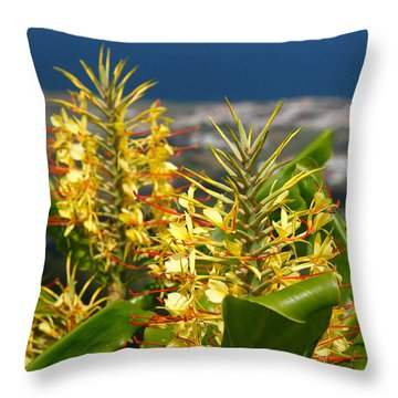 Hedychium Gardnerianum Throw Pillow by Gaspar Avila