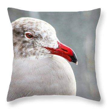 Heerman's Gull Throw Pillow