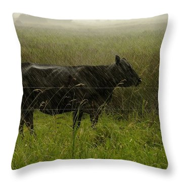 Heifer In The Rain Throw Pillow