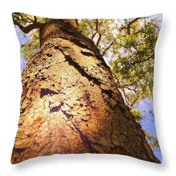 Height Throw Pillow