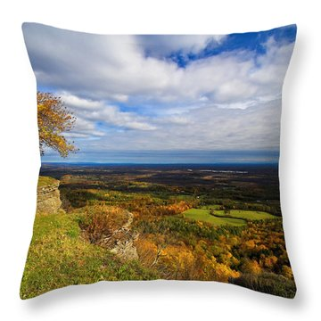 Heldeberg Fall Throw Pillow