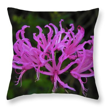 Throw Pillow featuring the photograph Helen by Mark Blauhoefer