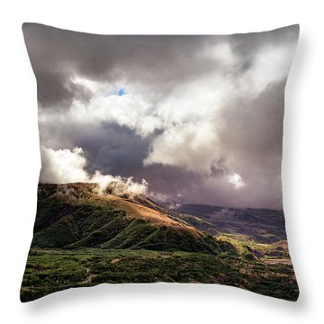 Helens Valley Throw Pillow