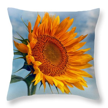 Helianthus Annuus Greeting The Sun Throw Pillow