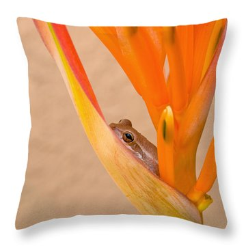 Heliconia And Frog Throw Pillow