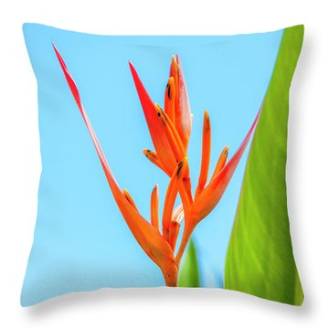 Heliconia Flower Throw Pillow