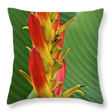 Heliconia Throw Pillow by Heiko Koehrer-Wagner