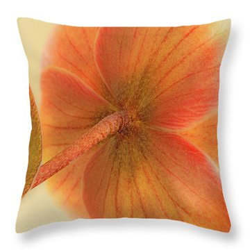 Hellebore Throw Pillow