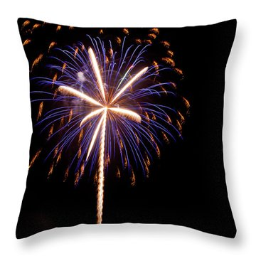 Hello 2014 Palmetto State Throw Pillow