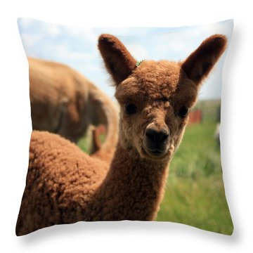 Hello Baby Throw Pillow
