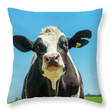 Hello Bessie Throw Pillow