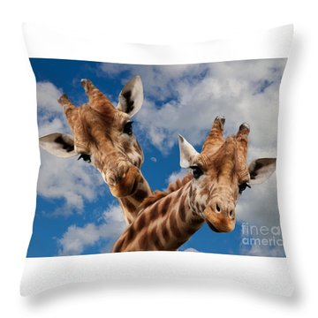 Throw Pillow featuring the photograph Hello by Christine Sponchia