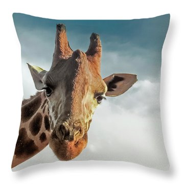 Throw Pillow featuring the photograph Hello Down There by Karen Lewis