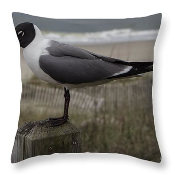 Hello Friend Seagull Throw Pillow