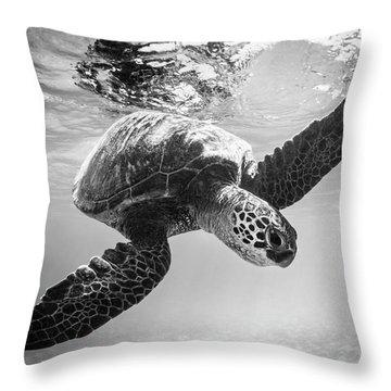 Hello Sea Turtle Throw Pillow