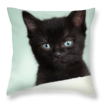 Throw Pillow featuring the photograph Hello Kitty by Amy Tyler
