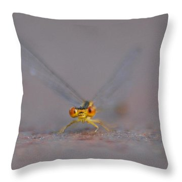 Throw Pillow featuring the photograph Hello by Ramona Whiteaker