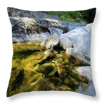 Throw Pillow featuring the photograph Hello by Sean Sarsfield