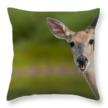 Hello Throw Pillow by Sebastian Musial