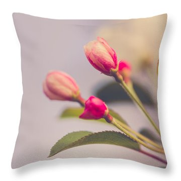 Hello Spring Throw Pillow by Yvette Van Teeffelen
