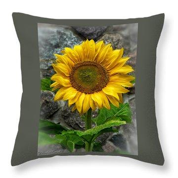 Hello Sun Shine Throw Pillow by Heather Kertzer