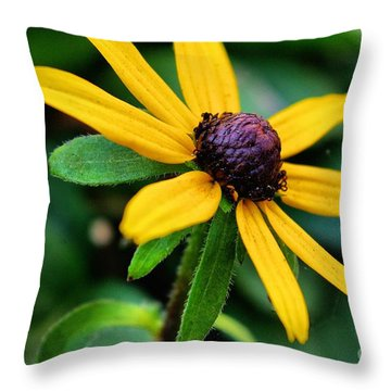 Throw Pillow featuring the photograph Hello Sunshine  by John S