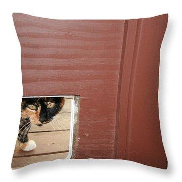 Curly Peeking Throw Pillow