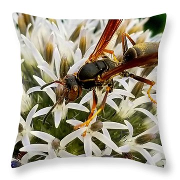 Hello, Wasp Throw Pillow