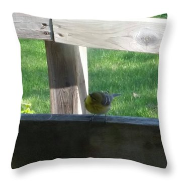 Hello Throw Pillow by Wendy Shoults