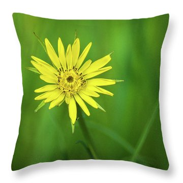 Throw Pillow featuring the photograph Hello Wild Yellow by Bill Pevlor