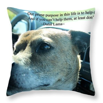 Throw Pillow featuring the photograph Help Others by Beauty For God