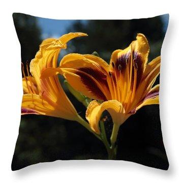 Hemerocallis Throw Pillow